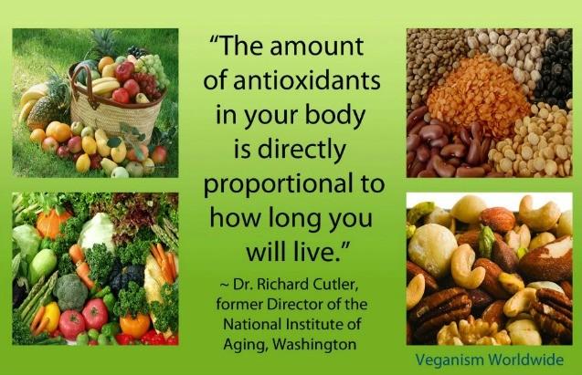 bouncing back with antioxidants