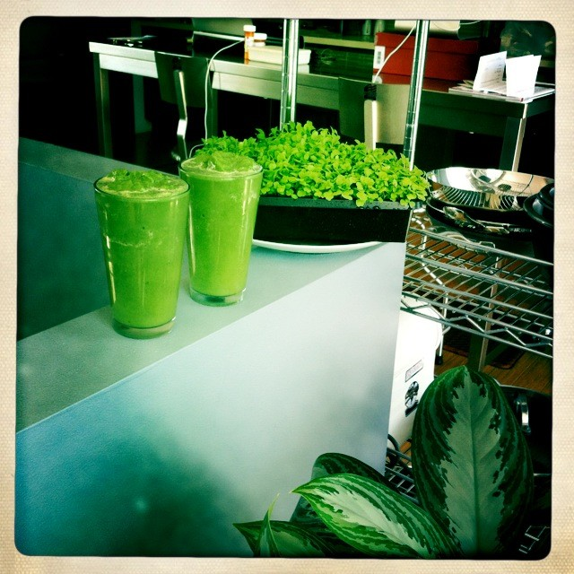 bouncing back with raw sprouted green foods