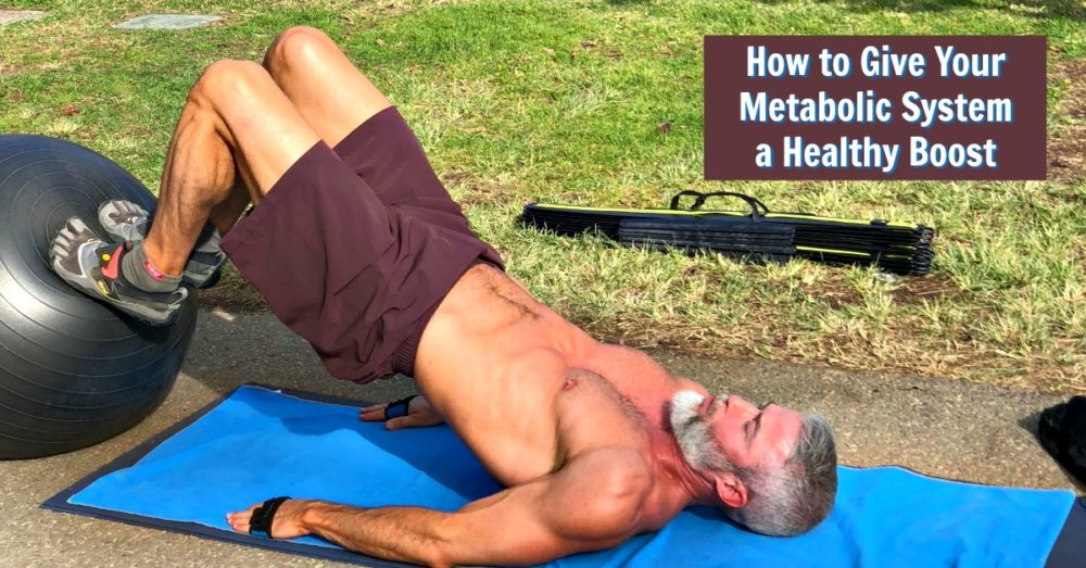 metabolic system